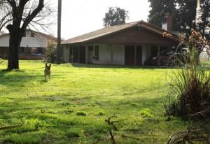 En Moreno, a 60 kilómetros de Buenos Aires, viven en una casa rodeada de árboles