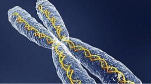 Las compañías de tecnología compiten por desarrollar sistemas de lectura de ADN más rápidos, eficientes y baratos.