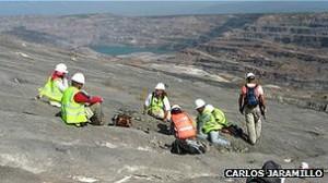 El Cerrejón, la mina de explotación de carbón a cielo abierto, en donde fueron hallados los fósiles.