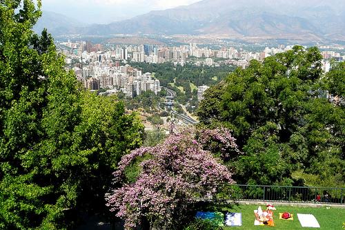 Los parques urbanos en tiempos de pandemia: ¿Qué viene más adelante?