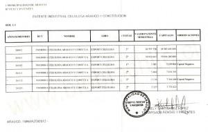 patente_celulosa_arauco-630x402