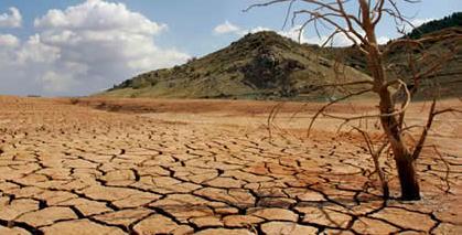 La crisis climática llega a nuestra mesa