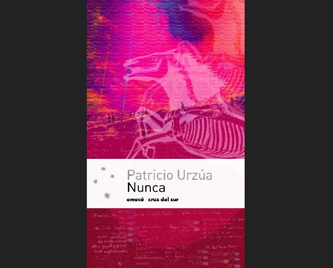 """Nunca"", de Patricio Urzúa"