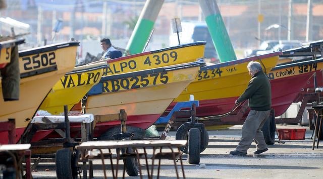 Ley de Pesca: una prueba para la Comisión de Ética