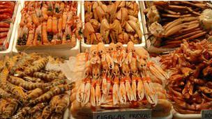 Científicos sugieren que la industria de la acuicultura reconsidere la forma en que trata a los animales.
