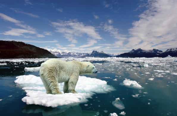 El año 2012 fue de los más cálidos registrados