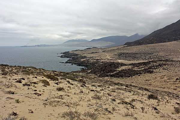 Endesa Chile ingresó al SEA la línea de transmisión eléctrica de central Punta Alcalde