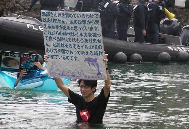 Comienza la temporada de caza de delfines en Taiji y activistas se movilizan para impedir nueva masacre