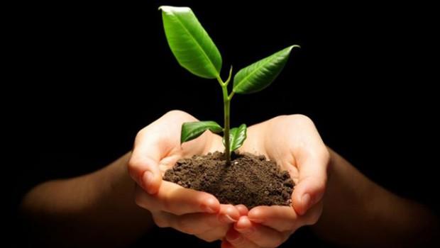 Desarrollo sostenible y geociencias: aportes para una nueva Constitución y un nuevo modelo de desarrollo