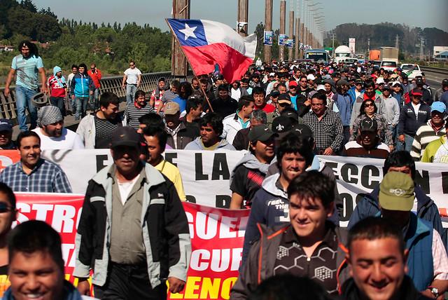 Pescadores artesanales acusan al gobierno de Piñera de