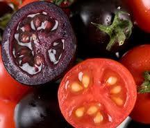 El tomate morado, un nuevo