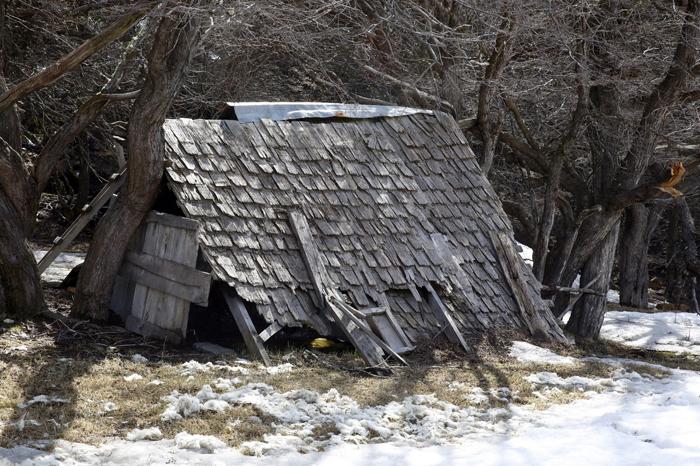 Techo de teja en Región de Aysén, Sebastián Preece