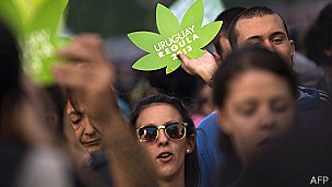 Algunos creen que la nueva ley sobre la marihuana puede disminuir el consumo de pasta base.