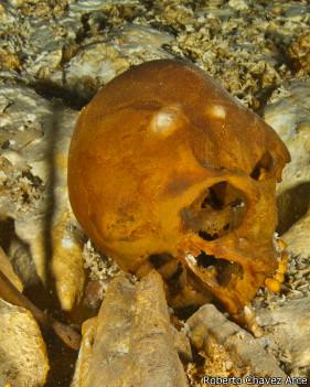 El cráneo de Naia, tal como fue hallado.