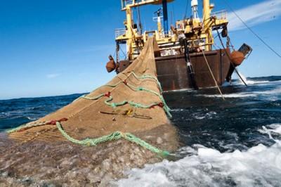 Pescadores artesanales denuncian que subsecretario Súnico sólo