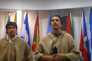 Federación Internacional de DD.HH. celebra condena contra Chile por aplicar Ley Antiterrorista a mapuches