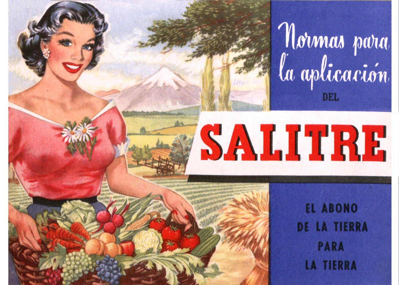 salitre-chile3