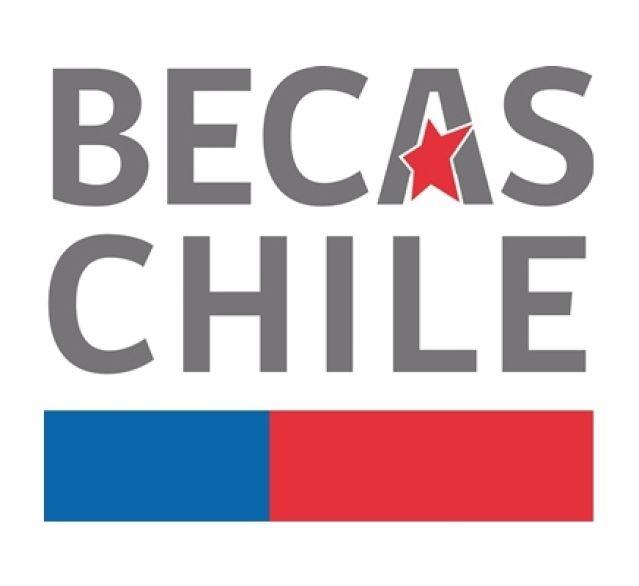 La campaña que busca que los hijos de políticos renuncien a Becas Chile