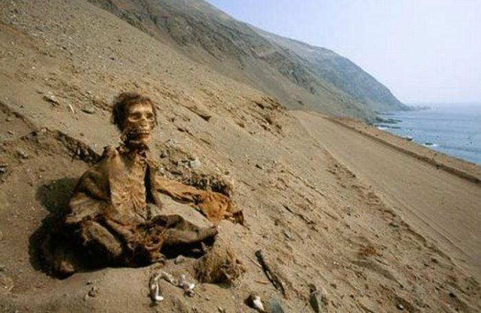 Contaminación por arsénico habría sido clave en momificación de cultura Chinchorro