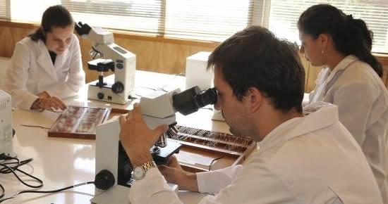 ¿Existe interés por la política científica en el país?