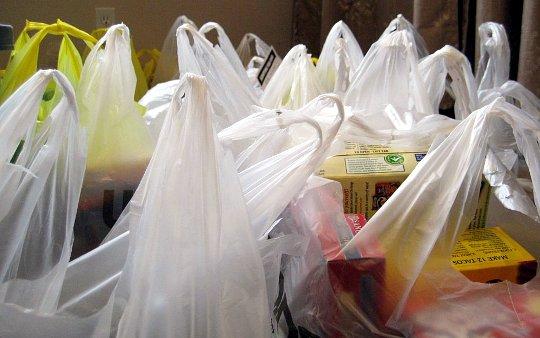 Entra en vigencia ordenanza municipal que prohíbe entregar bolsas plásticas en Las Condes