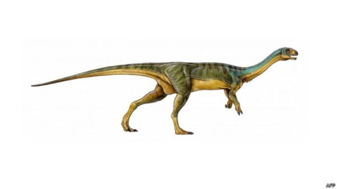 Un niño de siete años descubre en Chile un dinosaurio único