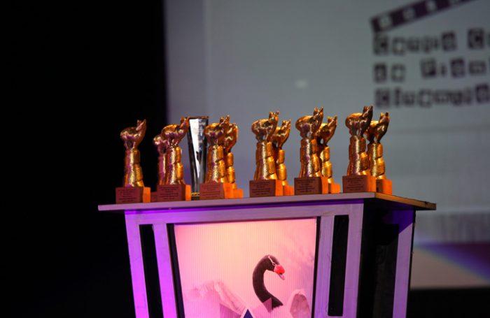 22° Festival Internacional de Cine de Valdivia abre convocatoria y anuncia sus bases de postulación