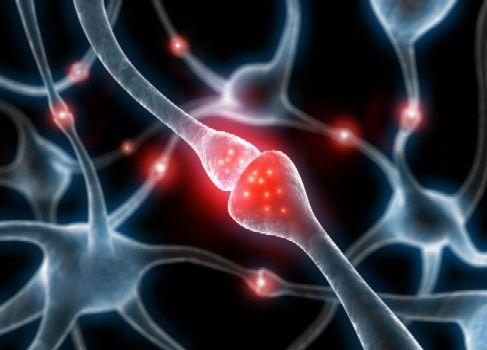 Casi cuatro millones de chilenos padecen síndrome metabólico y son potenciales víctimas del Alzheimer