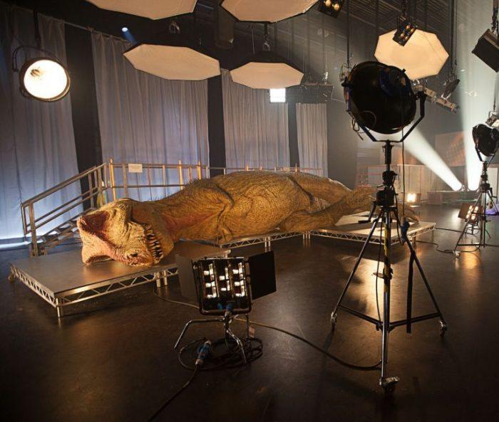 Autopsia a un tiranosaurio