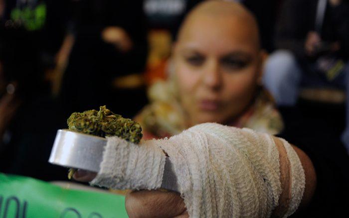 Sin apoyo del Gobierno, Cámara de Diputados aprueba en general proyecto que permite autocultivo de marihuana