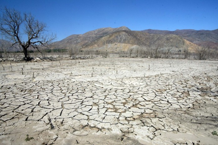 Bloomberg: crisis hídrica en Chile hace que agua se convierta en 'oro azul' con avance del desierto