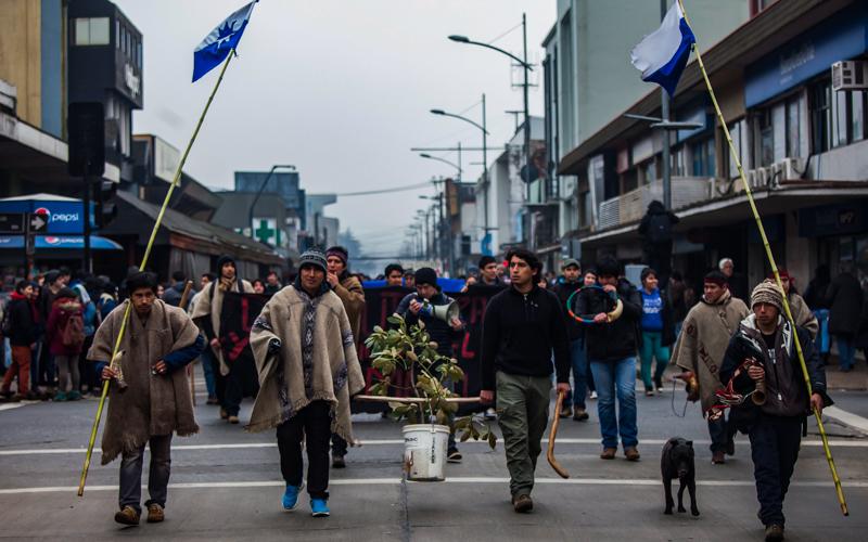 marcha mapuche-3