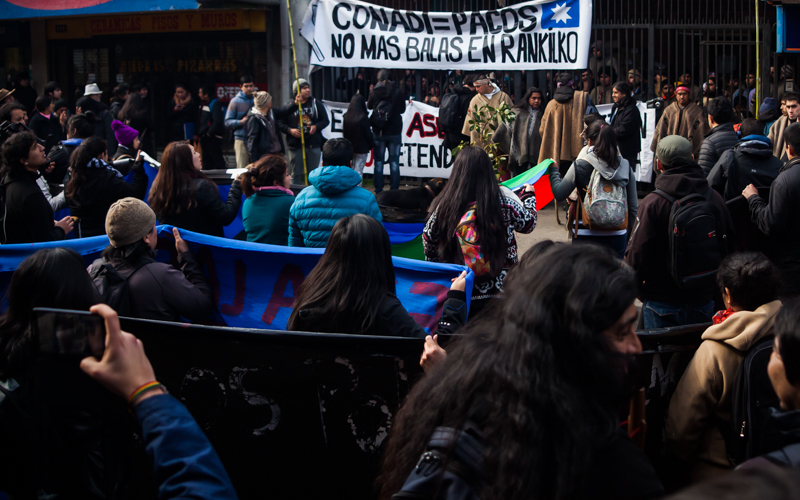 marcha mapuche-7