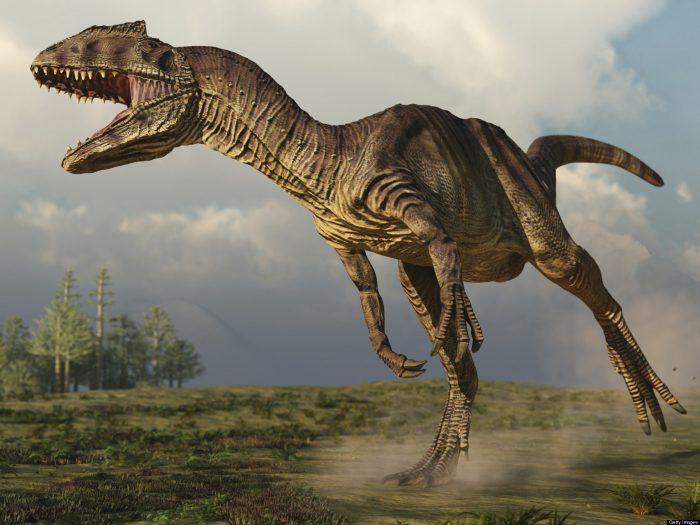 Nadie quiso comprar el esqueleto de un Allosaurus de 155 millones de años