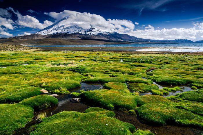 Simposio de Turismo Sustentable: Chile invierte 10 mil millones en Parque Nacionales
