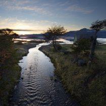 Estudio revela que agua dulce de Puerto Williams es la más pura del mundo