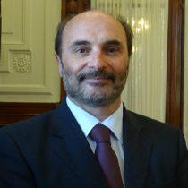 El conflicto y desconfianzas que apuntan a Ángel Cabeza como responsable de la crisis de la Dibam