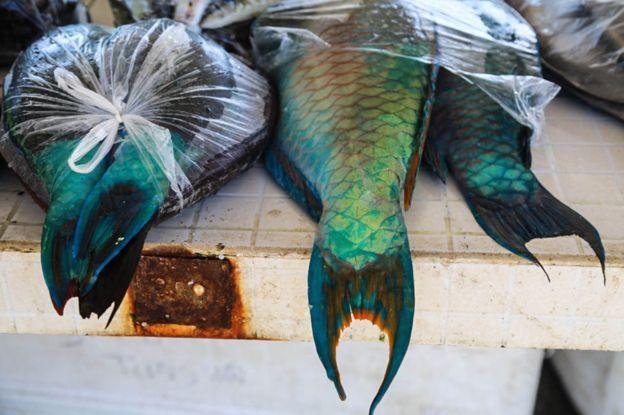 El pescado es el alimento tradicional en la isla.