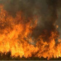 Seis incendios forestales permanecen activos