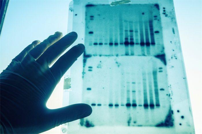 genomica 1
