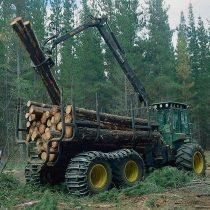 Financiamiento de la forestación y su implicancia socioeconómica