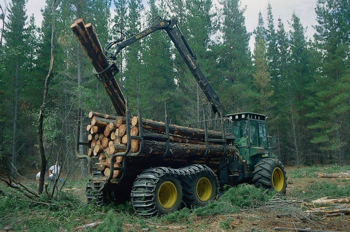 Reactivación del fomento a la forestación