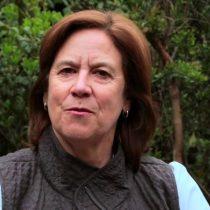 Mariana Aylwin es recibida en la Cancillería y recibe el apoyo de Rosa María Payá desde Cuba