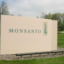 Bayer optimista tras desplome en bolsa por millonaria condena a Monsanto en EEUU