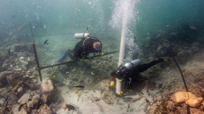 [Fotos] Los valiosos tesoros hallados en un barco de Vasco de Gama hundido hace 500 años