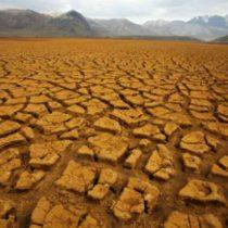 Crisis ambiental, inconciencia colectiva y transición