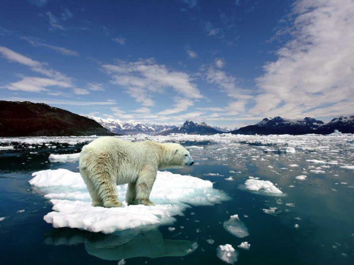 Cambio climático habrá causado medio millón de muertes para 2050