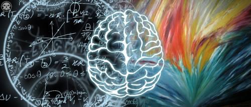 """Campamento de Matemáticas: Una opción para revertir el """"desastre"""" de la disciplina a nivel escolar"""