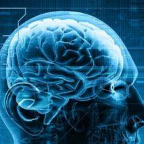 Neurociencia del enamoramiento… y de otras adicciones