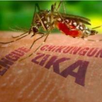 Ministerio de Salud confirma primer caso de virus Zika autóctono y transmitido por vía sexual en el país